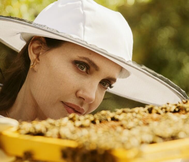 Анджелина Джоли спасает пчел по всей планете