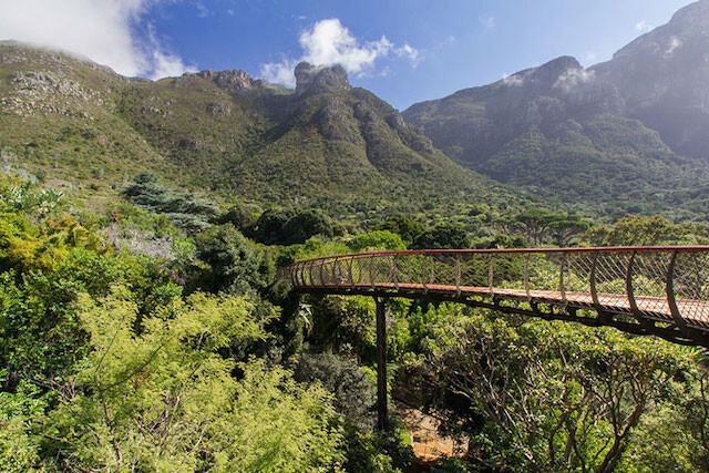 Зеленый свет: самые красивые ботанические сады в мире