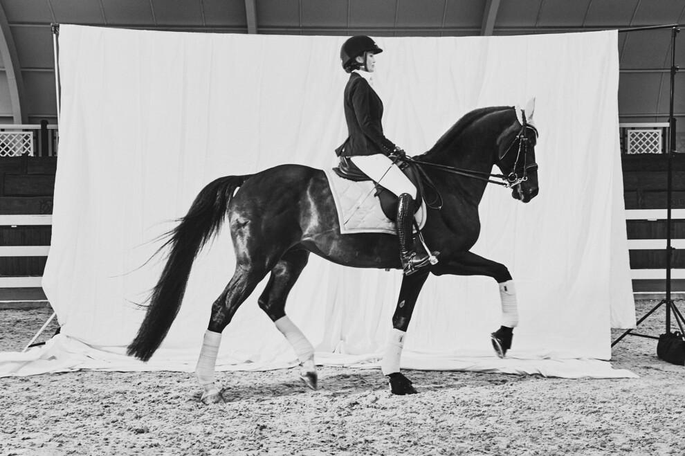 Ход конем: выездка - аристократичный вид спорта