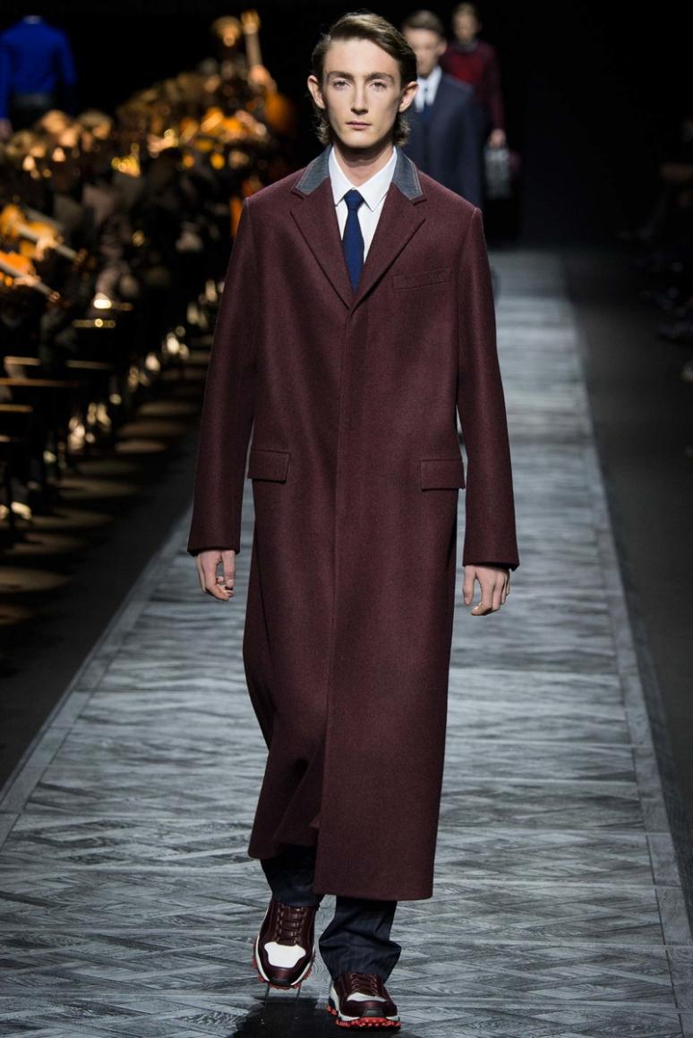 Dior Homme Menswear осень-зима 2015/2016 #30