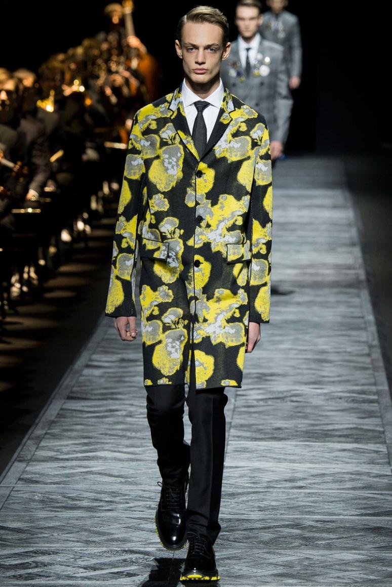 Dior Homme Menswear осень-зима 2015/2016 #5