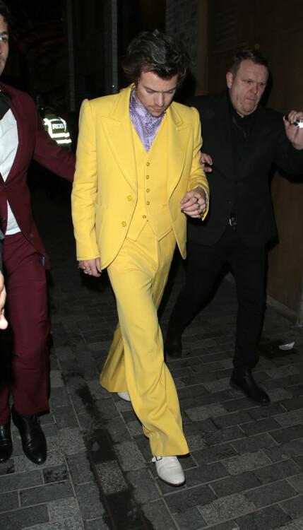 Гарри Стайлс в Marc Jacobs на церемонии вручения BRIT Awards, 2020