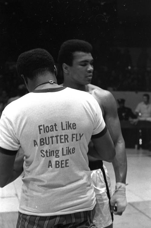Мухаммед Али готовится к бою против Оскара Бонавены 7 декабря 1970 года в Нью-Йорке, США