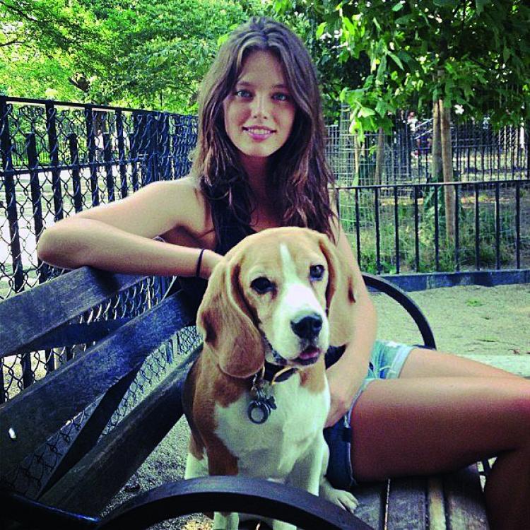 Эмили не раз упоминала о том, как любит животных, особенно собак