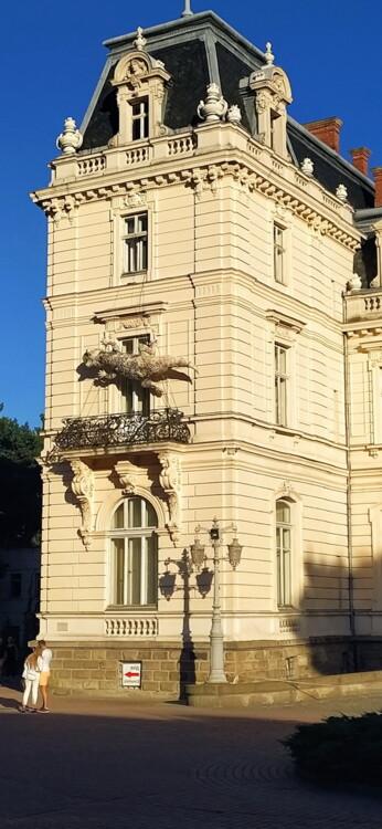 Скульптура Жука во Львове, 2020