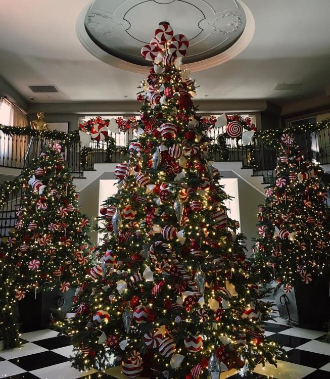 Кендалл Дженнер демонстрирует рождественскую елку в доме своей мамы