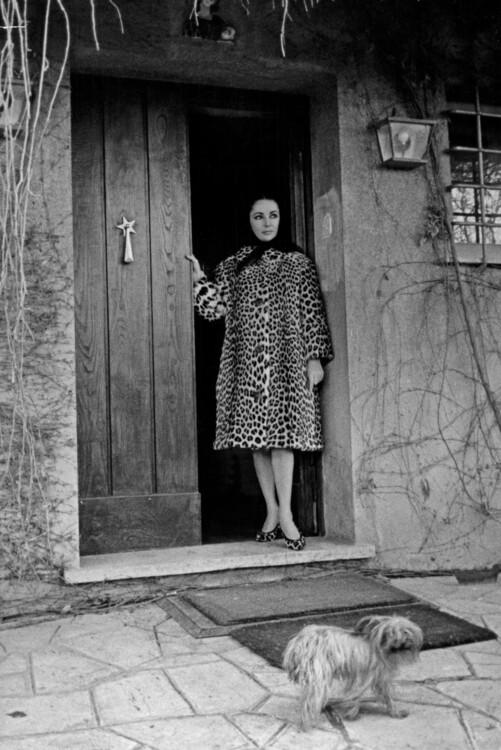 Элизабет Тейлор, 1962