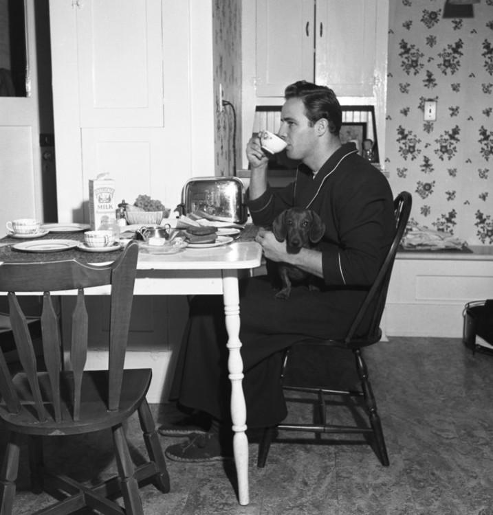 Марлон Брандо со своей таксой в доме бабушки в Калифорнии, 1949 год