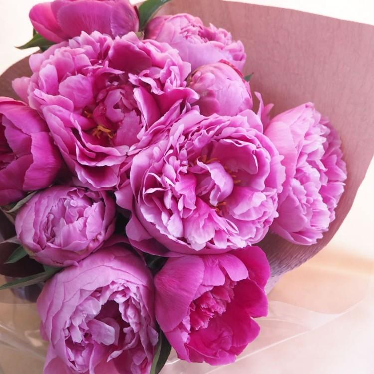@flowerliberte