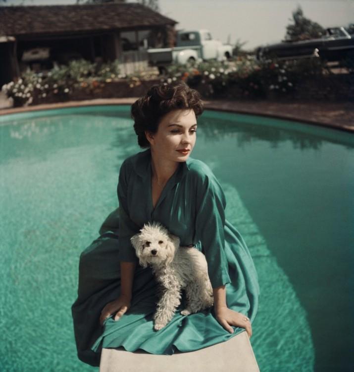 Джин Сіммонс зі своїм собакою