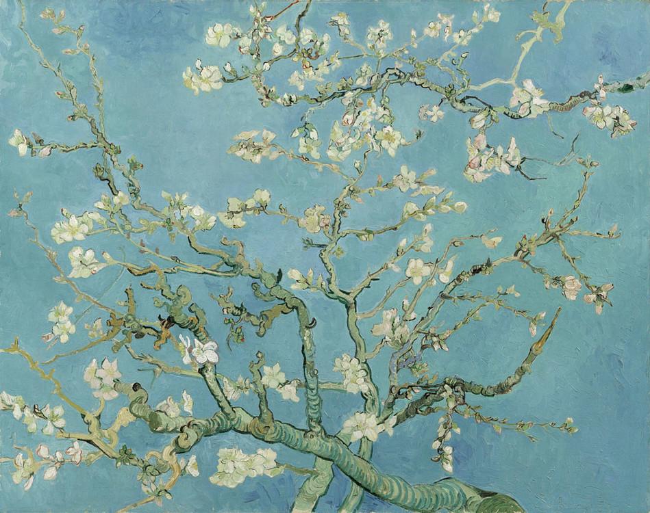 """""""Квітучі гілки мигдалю"""", 1890, Музей Вінсента Ван Гога, Амстердам, Нідерланди"""