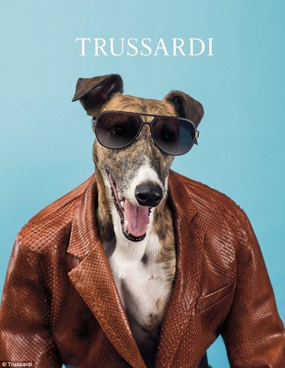 Рекламная кампания Trussardi