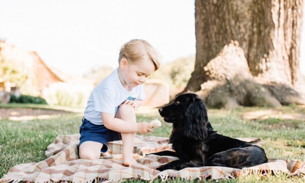 Принц Георг угощает пса мороженым