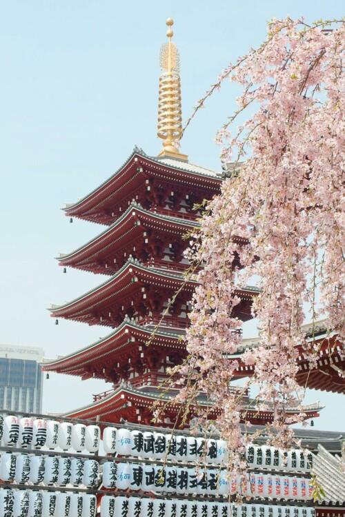 9. Токио, Япония. Photo: Yu Kato / Unsplash