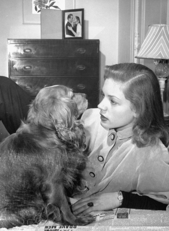 Лорен Беколл зі своїм кокер-спанієлем у номері готелю Gotham Hotel у Нью-Йорку, 1945 рік
