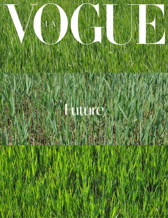 ТИБЕРИЙ СИЛЬВАШИ Без названия, коллаж из трех работ из серии «Трава». Фотография, 70 х 100 см
