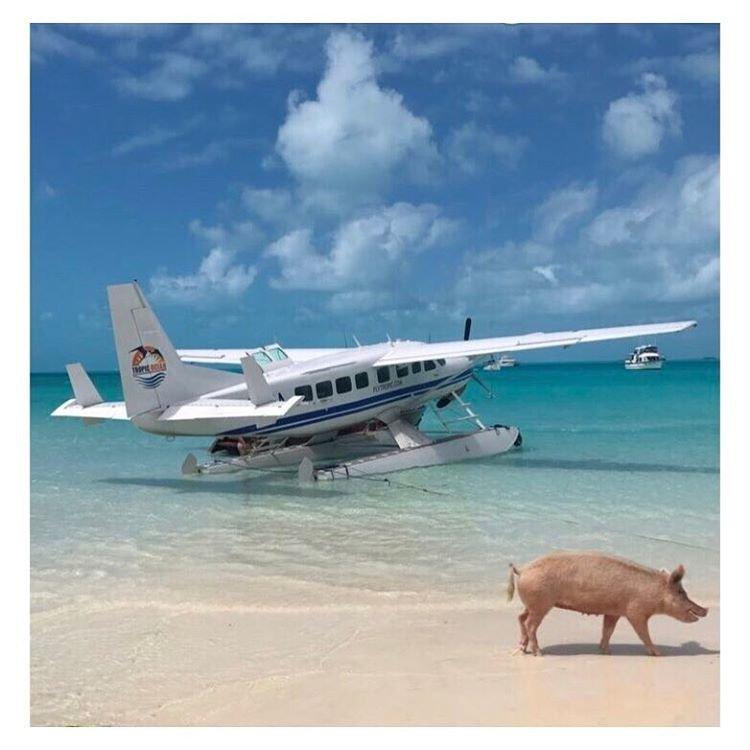 Лили Олдридж на Багамах