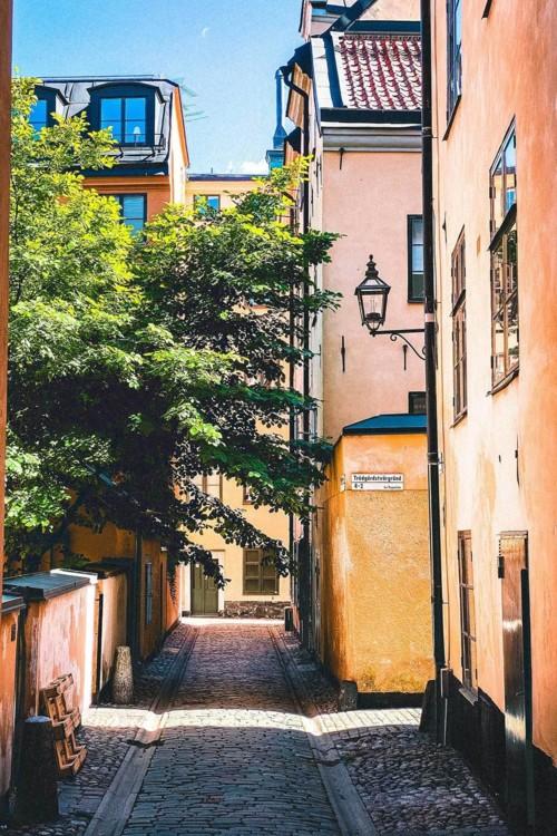 6. Стокгольм, Швеция. Photo: Oscar Ekholm Grahn / Unsplash