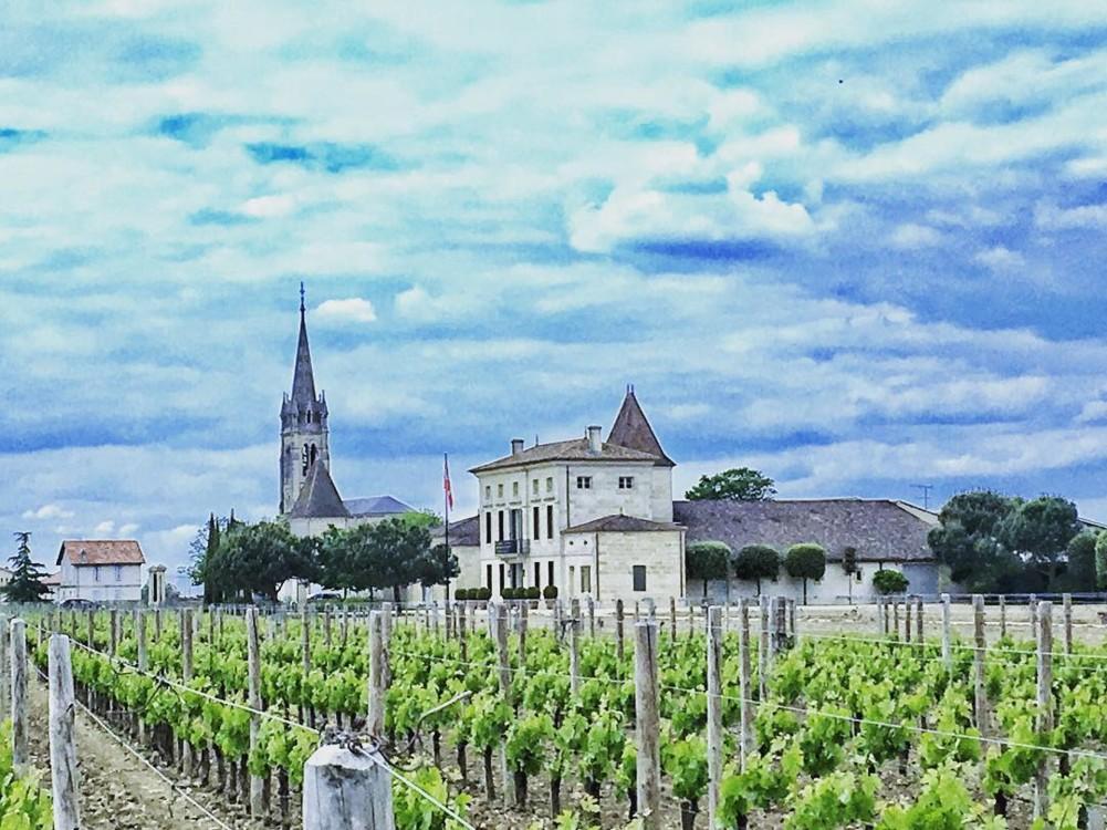 Винодельческое хозяйство Château Pétrus @helenk2112