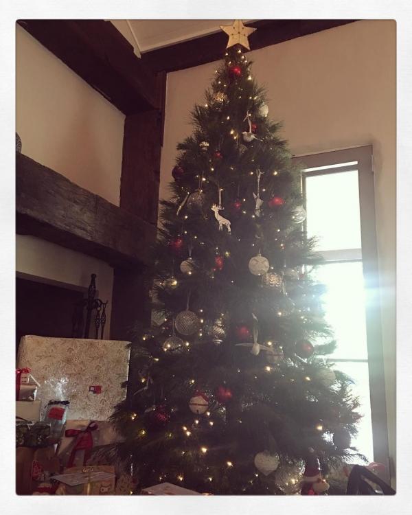 Рождественская елка Миранды Керр
