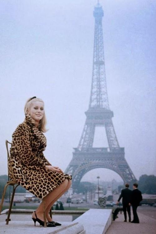 Катрин Денев, 1960-е