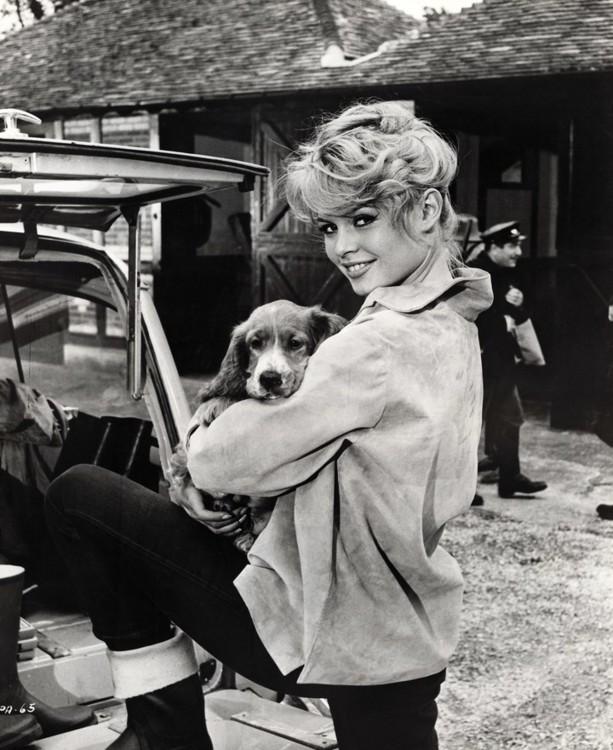 """Бриджит Бардо со своей собакой во время съемок """"Парижанки"""" в 1957 году"""