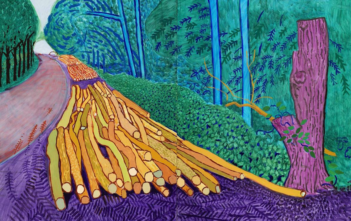 «Поваленные деревья в Волдгейте», 2008