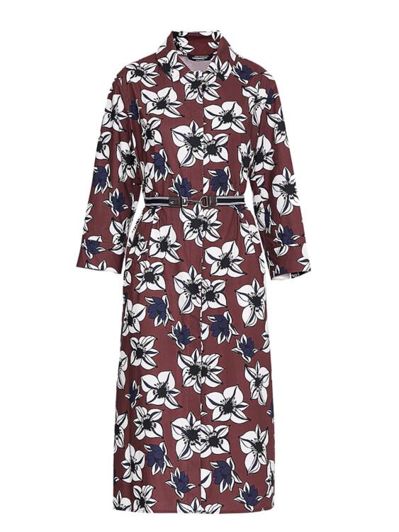 Бавовняна сукня Max Mara