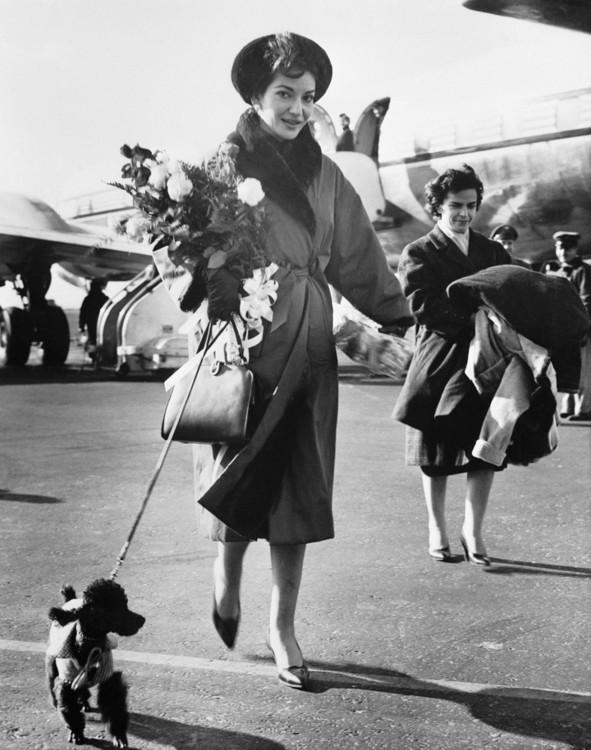 Мария Каллас и ее черный пудель Той в аэропорту им. Джона Ф. Кеннеди в Нью-Йорке, 1959 год