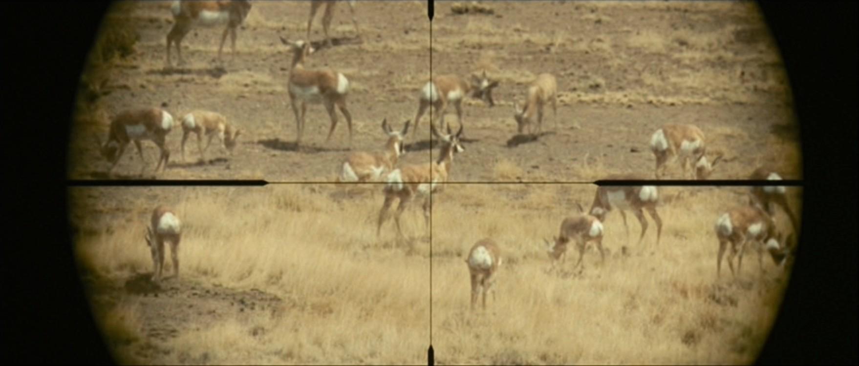 Кадр з фільму «Старим тут не місце», 2007