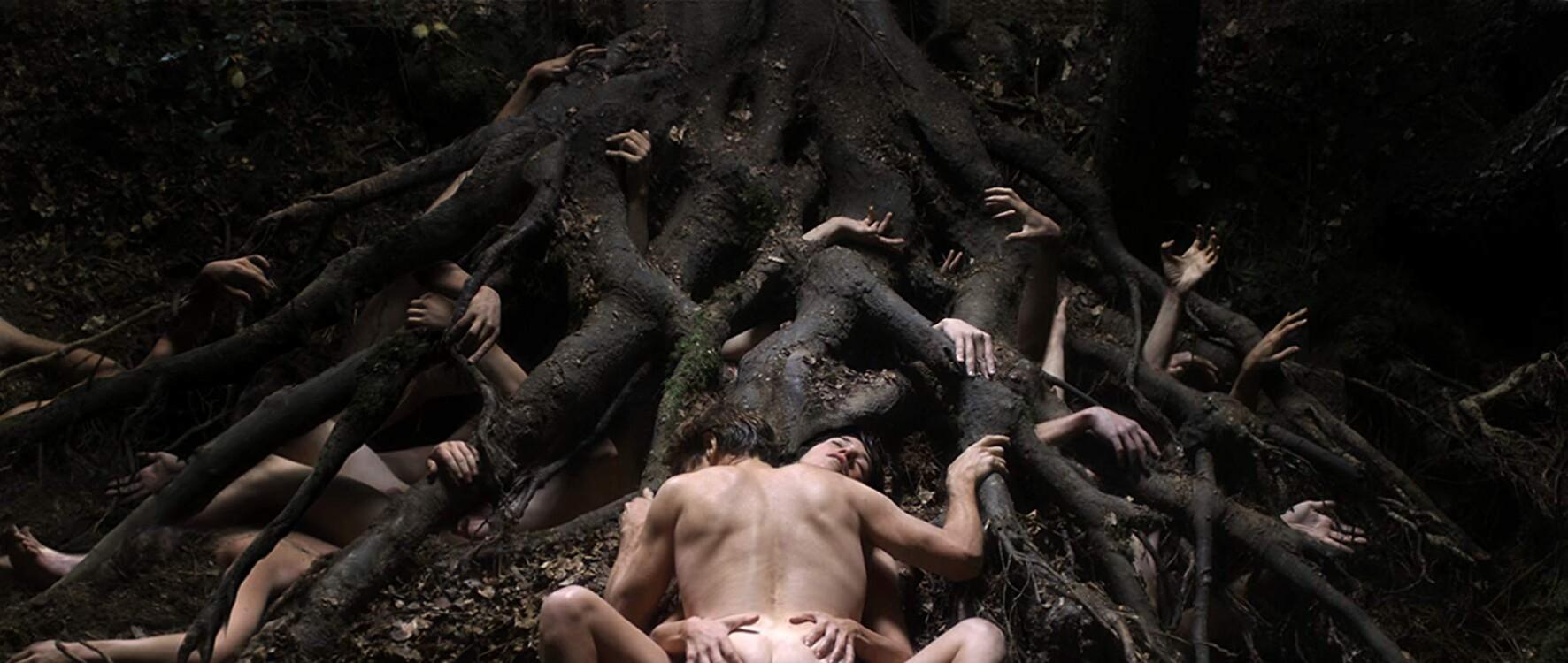 Кадр з фільму «Антихрист», 2009