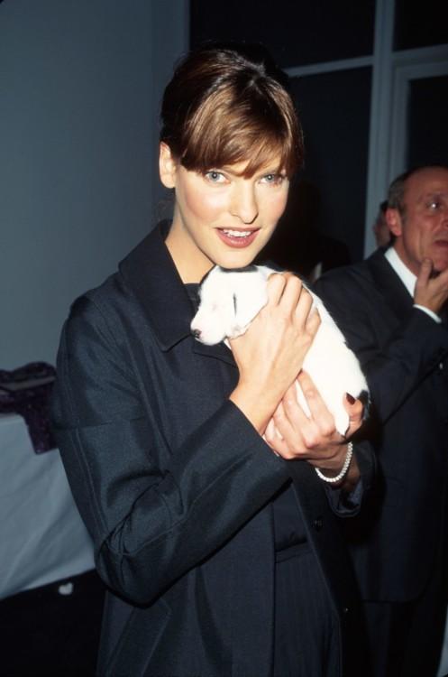 Лінда Євангеліста з цуценям на руках, 1997 рік