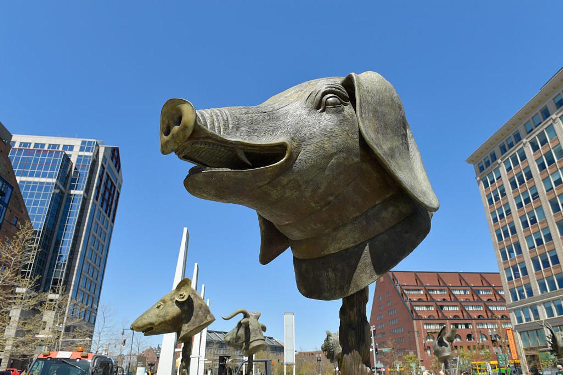 """""""Круг животных"""", 2011 год. Фото: Getty images"""