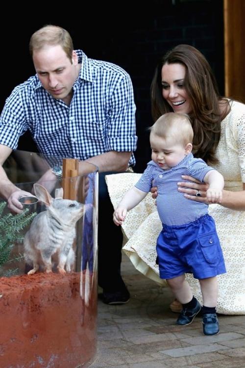 Принц Георг в зоопарке Taronga Zoo во время его первого тура в Австралию вместе с родителями