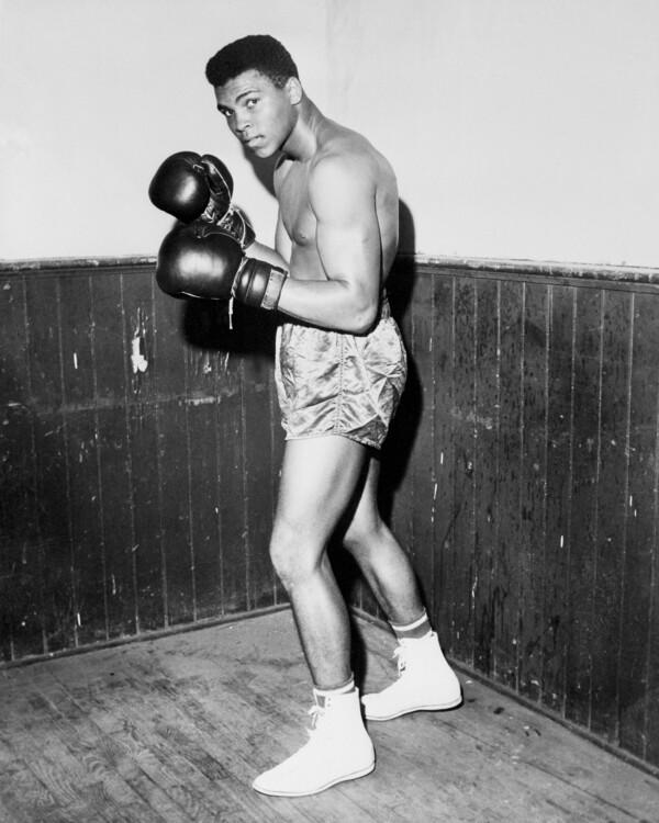 1960 году Клей стал больше, и его репутация тоже. Лучший боксер-любитель, в том же году он выиграл титул «Золотые перчатки» в супертяжелом весе в Мэдисон-Сквер-Гарден в Нью-Йорке