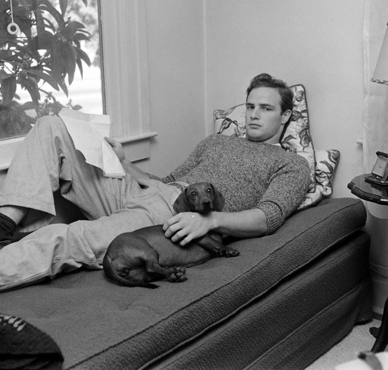 Марлон Брандо с таксой в доме своей бабушки в Калифорнии, 1949 год