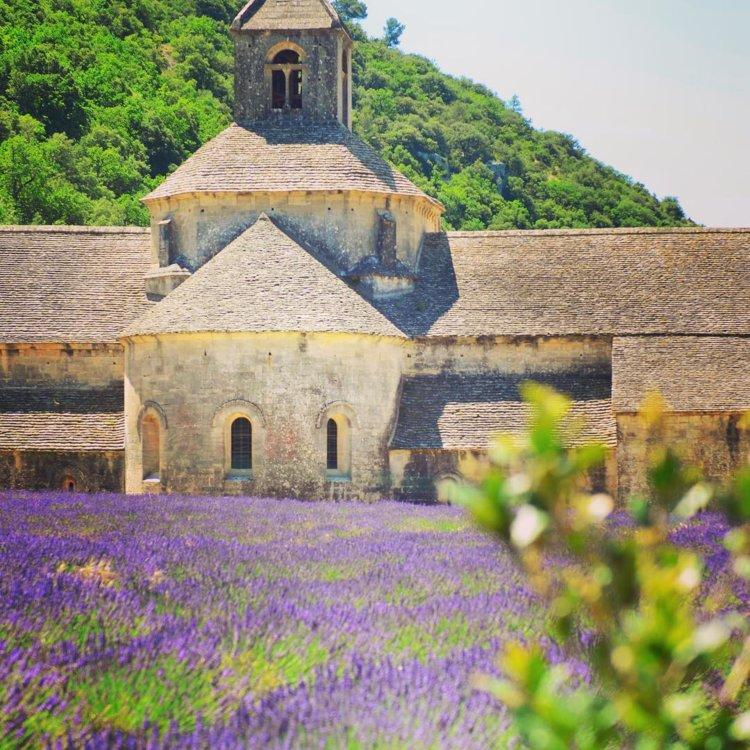 Монастырь Сенанк, Прованс