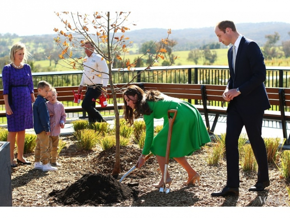 Кейт Миддлтон участвует в посадке деревьев во время тура в Австралию (апрель 2014)