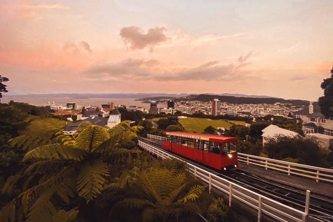 19. Веллингтон, Новая Зеландия. Photo: Guillaume Lebelt / Unsplash