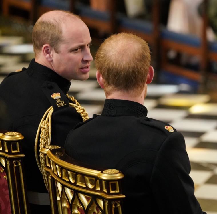 Принц Гаррі і принц Вільям