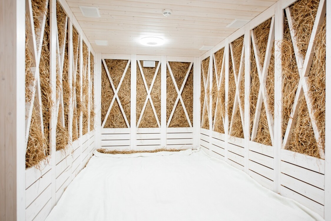 сенная комната в Grand Hotel Lviv Luxury & Spa