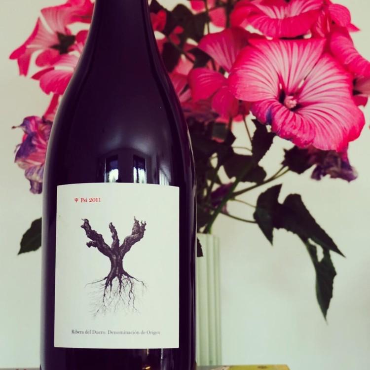 Вино Dominiode Pingus @vino_osophy