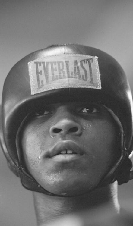 Кассиус Клей готовится к бою против Арчи Мура, октябрь 1962 года, Лос-Анджелес, Калифорния