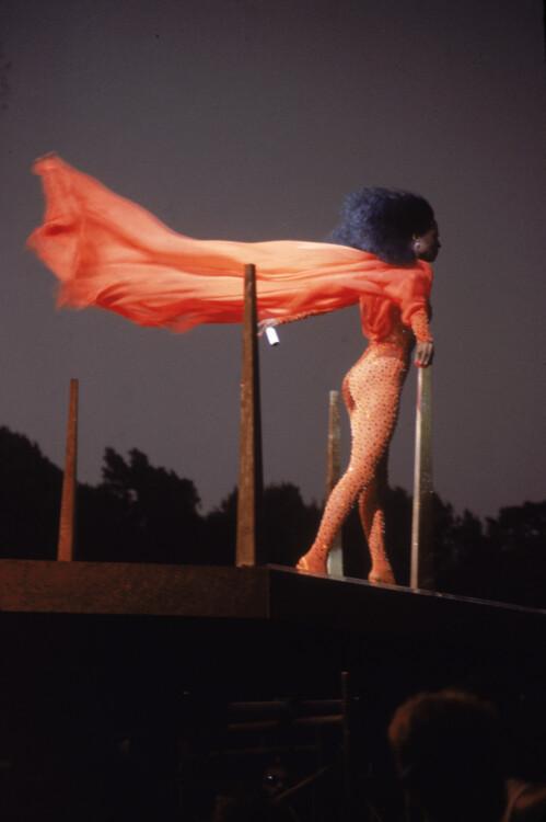 Дайана Росс выступает в Центральном парке в Нью-Йорке, 1983