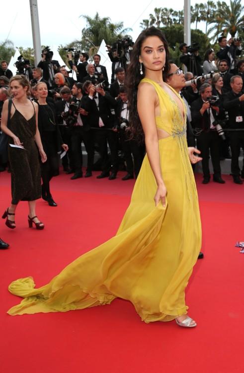 Шанина Шейк в платье Alberta Ferretti