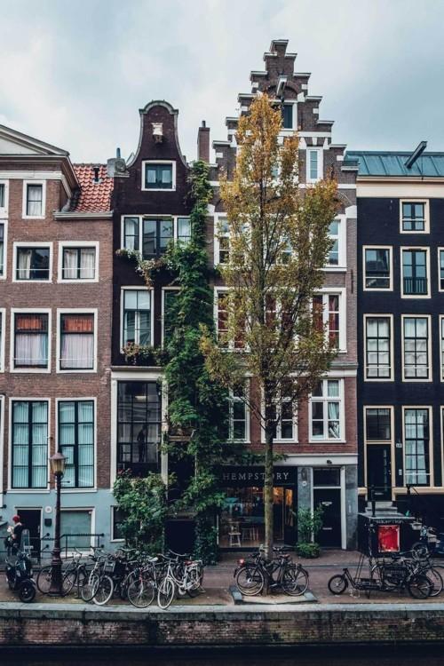 7. Амстердам, Нидерланды. Photo: Robin Ooode / Unsplash