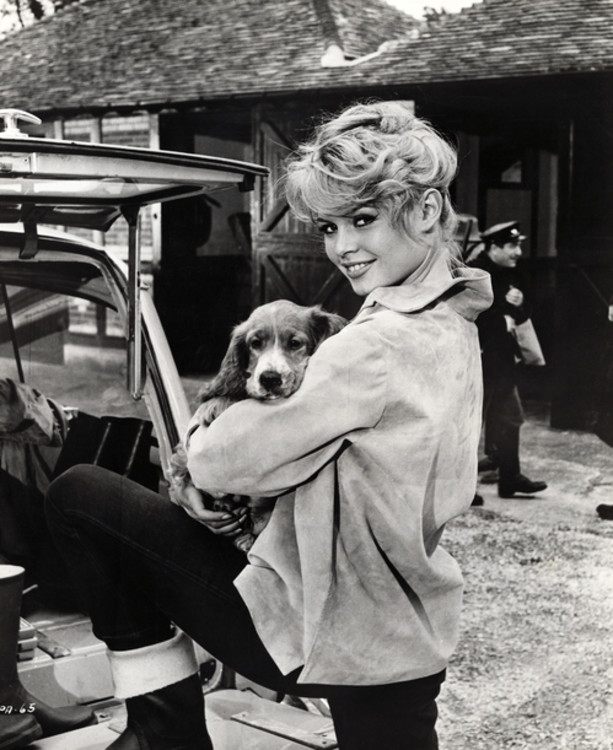"""Бріджит Бардо з собакою на зйомках фільму """"Парижанка"""", 1957"""
