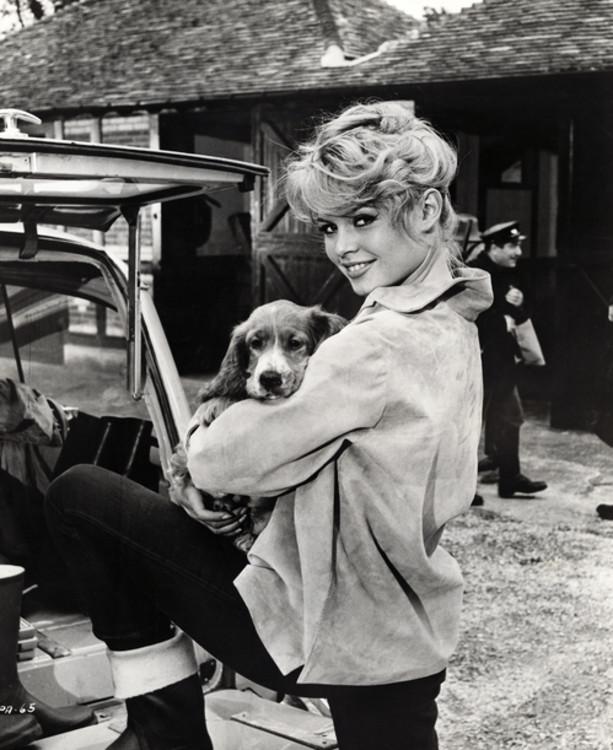 "Бриджит Бардо с собакой на съемках фильма ""Парижанка"", 1957"