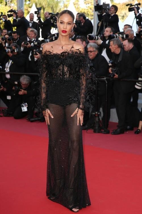 Джоан Смоллс в Roberto Cavalli Couture на Каннском фестивале