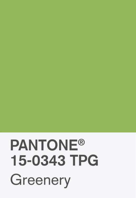 2017: свежая зелень